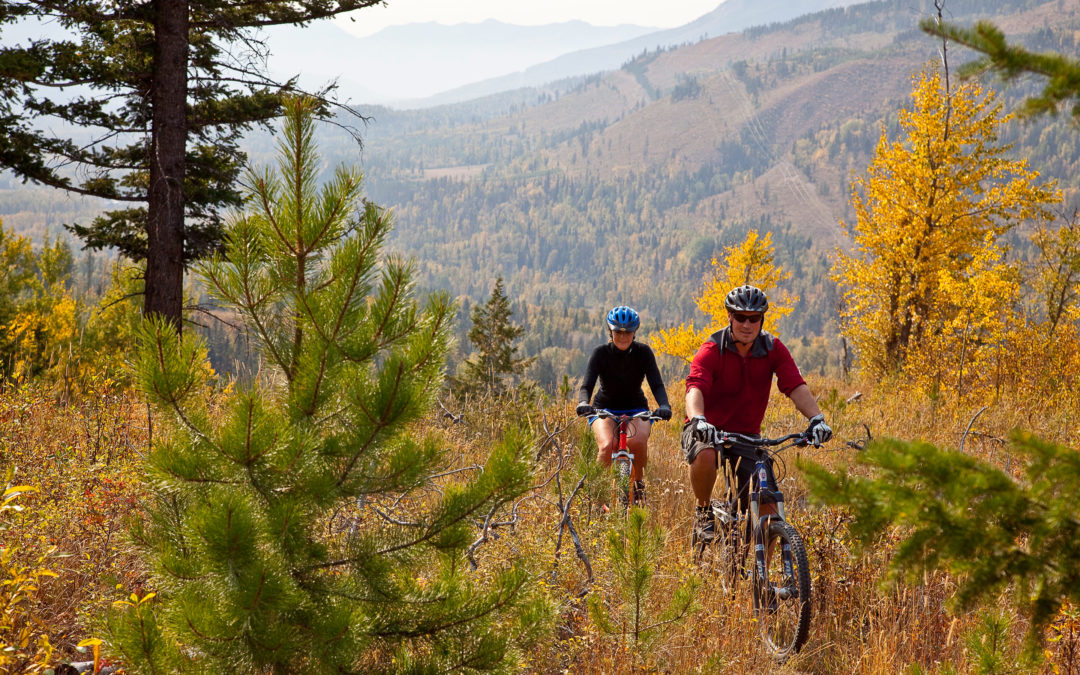 Sparwood Recreation 2030, Recreation Plan