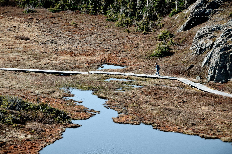 Fogo Island, Trail Signage